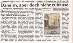 preview kronen zeitung andrea stift